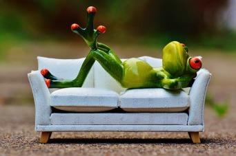 relaxing frog Kikis de la Creme